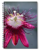 Amazing Passion Flower Spiral Notebook