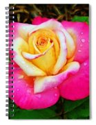Amazing Red Yellow Rose Spiral Notebook