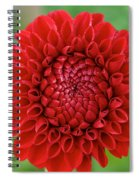 Amazingly Perfect Spiral Notebook