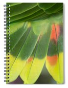 Amazon Parrots Feathers Abstract Spiral Notebook