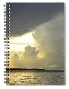 Amazon River Landscape Spiral Notebook