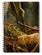 Amazon Tree Boa Spiral Notebook