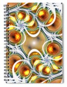 Amber Clusters Spiral Notebook