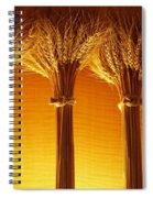 Amber Grains Spiral Notebook