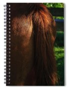 Amber Horse Tail Spiral Notebook