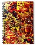 Amber Wonderland Spiral Notebook