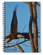 American Bald Eagle I Mlo Spiral Notebook