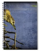 American Bittern With Brush Calligraphy Lingering Mind Spiral Notebook