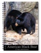 American Black Bear  Spiral Notebook