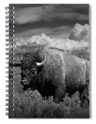 American Buffalo Or Bison In The Grand Teton National Park Spiral Notebook
