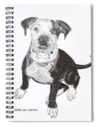 American Bull Dog As A Pup Spiral Notebook