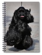 American Cocker Spaniel In Action Spiral Notebook
