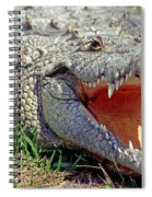 American Crocodile Spiral Notebook
