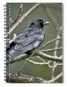 American Crow Spiral Notebook