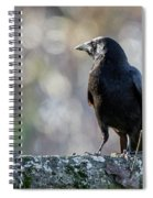 American Crow Square Spiral Notebook