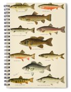 American Game Fish Spiral Notebook