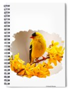 American Goldfinch Branch Of Forsythia Spiral Notebook