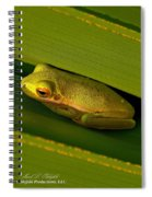 American Green Tree Frog I Mlo Spiral Notebook
