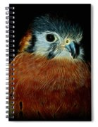 American Kestrel Digital Art Spiral Notebook