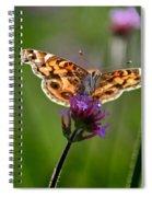 American Lady Butterfly In Garden Spiral Notebook