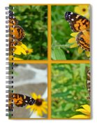 American Lady Butterfly - Vanessa Virginiensis Spiral Notebook