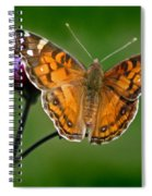 American Lady Butterfly With Green Background Spiral Notebook