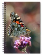 American Painted Lady Butterfly 2014 Spiral Notebook