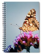 American Painted Lady Butterfly Blue Background Spiral Notebook
