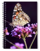 American Painted Lady Butterfly Purple Background Spiral Notebook