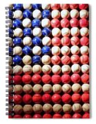 American Pastime Spiral Notebook