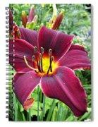 American Revolution Daylily Spiral Notebook