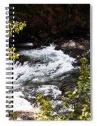 American River's Levels Spiral Notebook