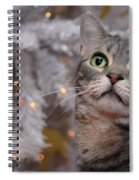 American Shorthair Cat With Holiday Tree Spiral Notebook