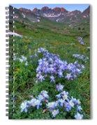 American Sunrise 2 Spiral Notebook