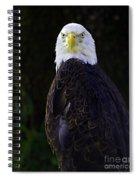 American Symbol Three Spiral Notebook