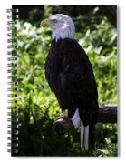 American Symbol Two Spiral Notebook