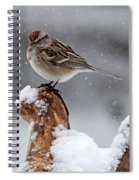 American Tree Sparrow In Snow Spiral Notebook