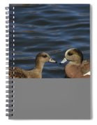 American Widgeon Pair Spiral Notebook