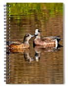 American Wigeon Pair Together Spiral Notebook