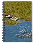 American Wigeon Taking Off Spiral Notebook