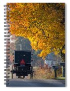 Amish Buggy Fall 2014 Spiral Notebook
