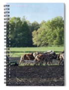 Amish Plowing Field Spiral Notebook