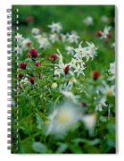 Among The Lillies Spiral Notebook
