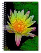 Among The Lily Pads Spiral Notebook