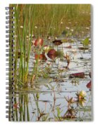 Among The Waterlillies 2 Spiral Notebook