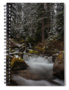 Amongst The Trees And Stones Spiral Notebook