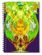 Amphora Of Fire Spiral Notebook