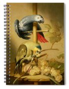 An African Grey And An Orange Winged Amazon Parrot On  A Perch With Grapes Spiral Notebook