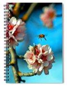 An Almond Pollen Day Spiral Notebook
