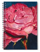 An American Beauty Spiral Notebook